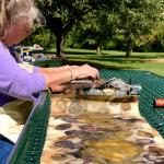 Trish McKinney,  Forever Flowers – Painting Flowers With Eternal Messages
