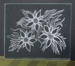 Jill Timm, Amazing Glass Etching