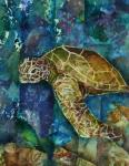 Carol Spohn, Turtle Collage