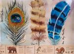 Jacqueline Newbold, A Naturalist's Art Journal