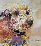 Helen  Shafer Garcia, Watercolor Furry Animal Portraits